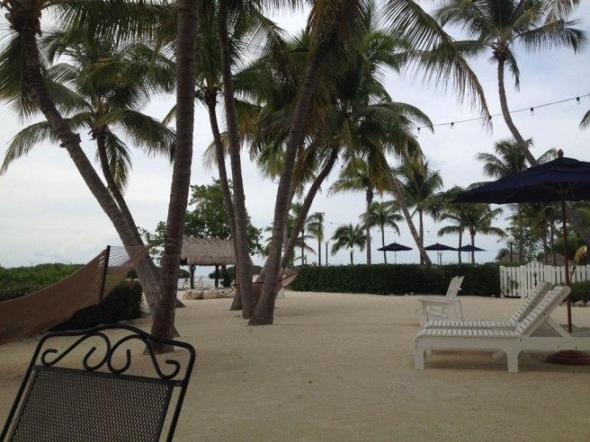 coconut_palm_inn_florida_keys_tavernier_beach_palmtree